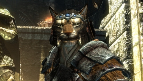 Look at that lovely Khajiit.