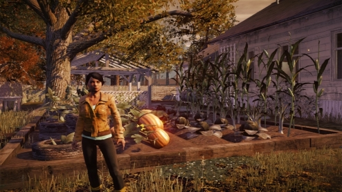 State of Decay 05