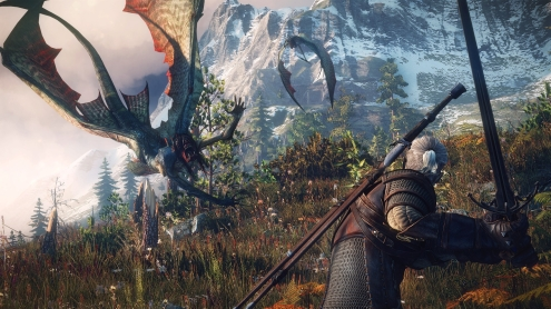 The Witcher 3 Wild Hunt 16