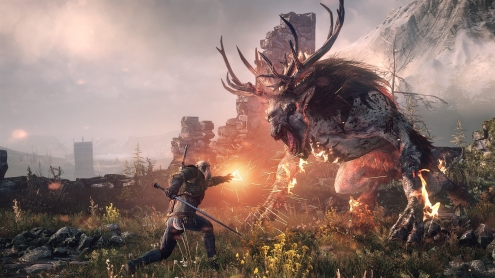 The Witcher 3 Wild Hunt 18