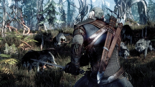 The Witcher 3 Wild Hunt 19