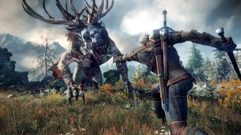 The Witcher 3 Wild Hunt 20